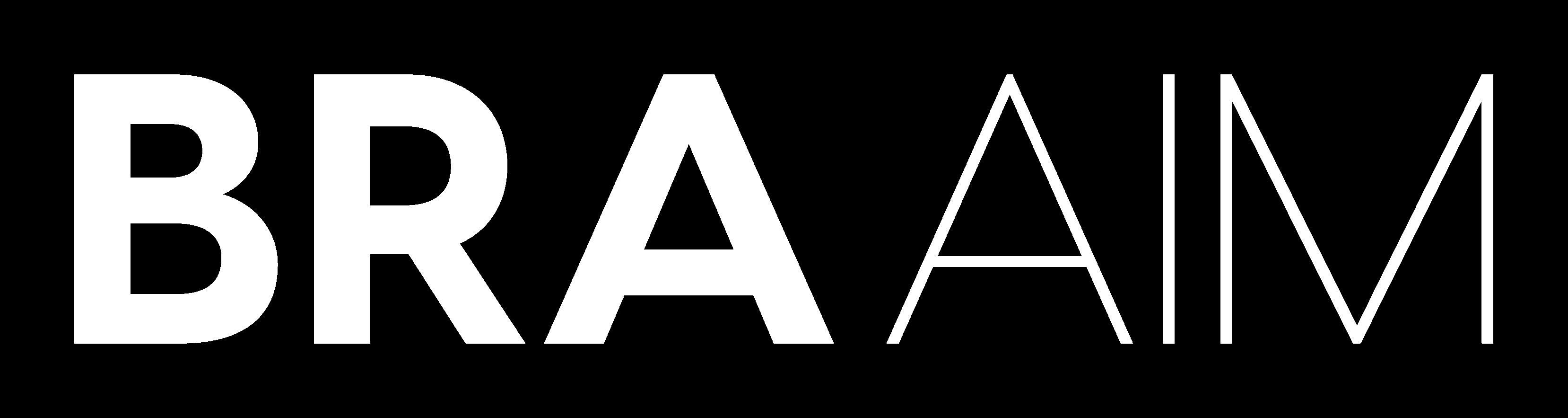 Logo BRAAIM